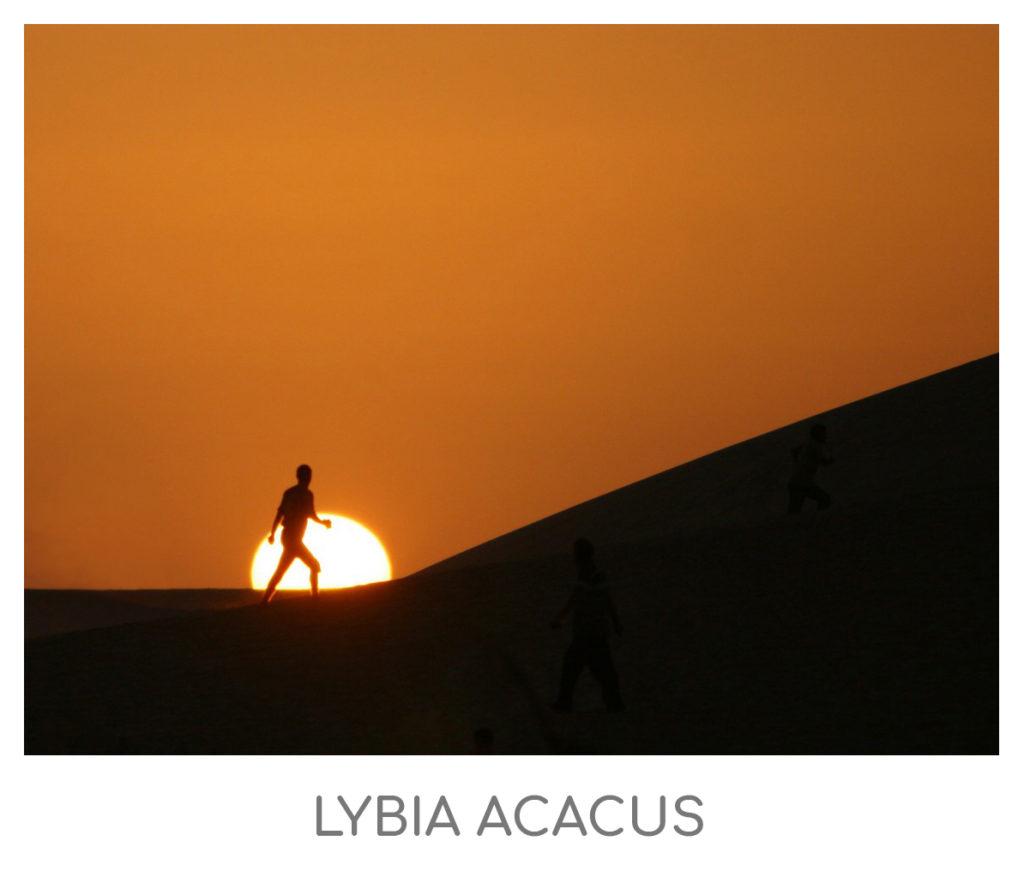 ACACUS-1024x877 AFRICA