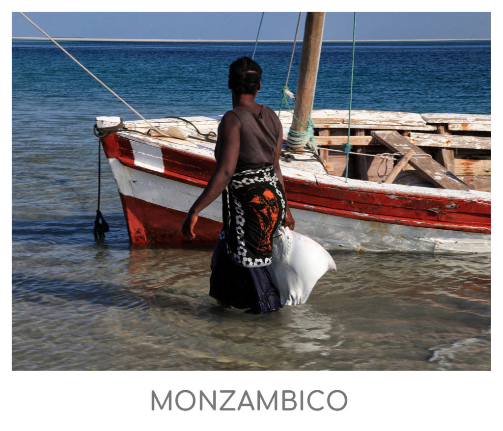 MONZAMBICO-1024x878 AFRICA