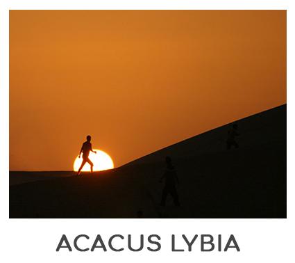 ACACUS AFRICA