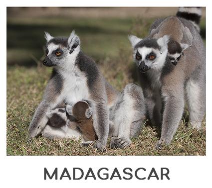 MADAGASCAR AFRICA