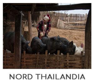 NORD-THAILANDIA-300x267 INDOCINA